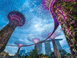 Singapore to Speed Up Process of Awarding Blockchain Payment Patents - CoinDesk