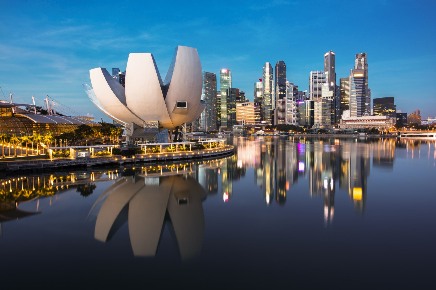 Singapore Warns 8 Exchanges Over Unregistered Securities Trading - CoinDesk